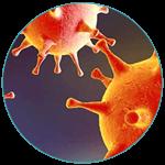 Pós-Herpética-indolor2